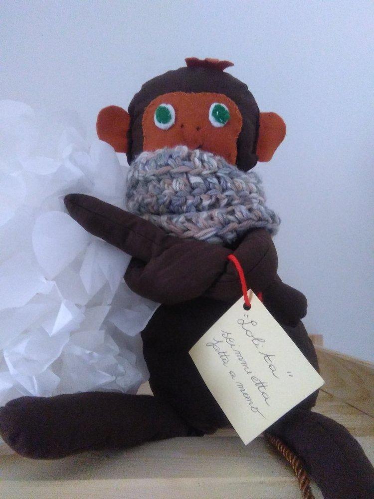 scimmietta Petronilla